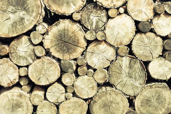 Picado madeira textura fundo carvalho Foto stock © trgowanlock