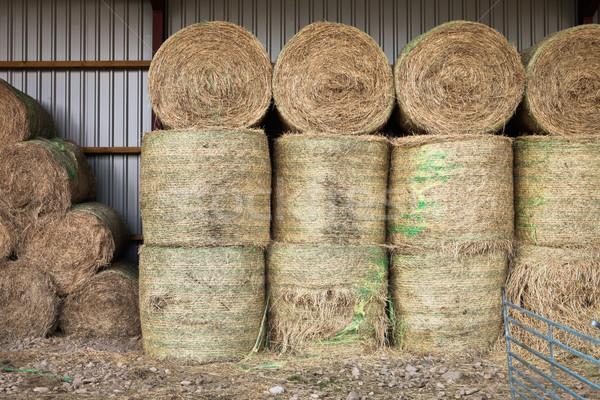сено современных сарай области хлеб Сток-фото © trgowanlock