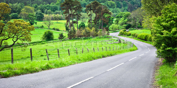 Kırsal yol araba doğa yaz yeşil Stok fotoğraf © trgowanlock
