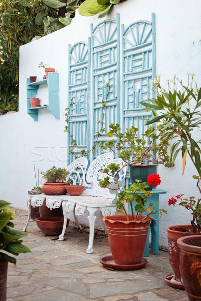 греческий саду Villa домой растений конкретные Сток-фото © trgowanlock