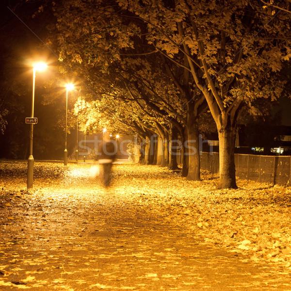 Path at night Stock photo © trgowanlock