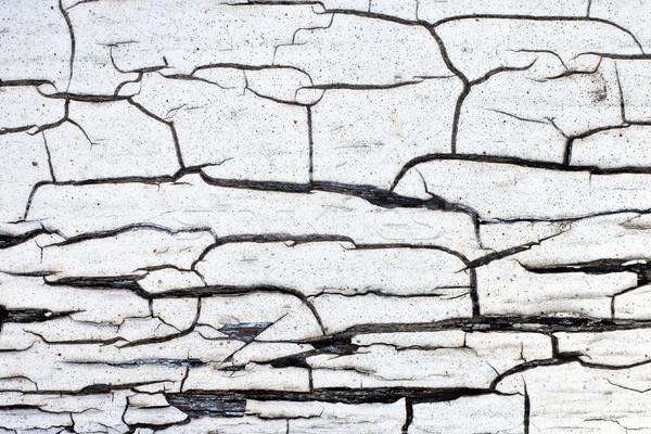 Gebarsten gedetailleerd afbeelding geschilderd hout Stockfoto © trgowanlock