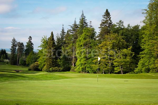 Golfbaan gras golf zon sport zonsondergang Stockfoto © trgowanlock