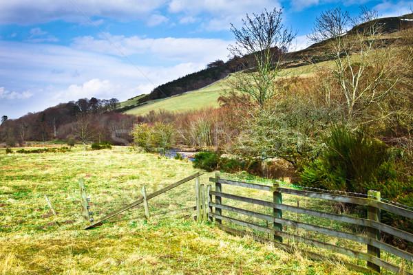Hills primavera dia escócia grama natureza Foto stock © trgowanlock