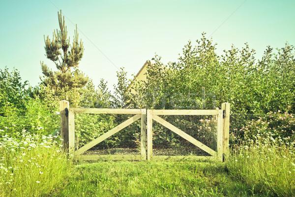 Houten poort landelijk bloemen voorjaar gras Stockfoto © trgowanlock