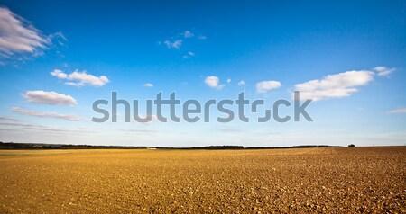 Freshly tilled field Stock photo © trgowanlock