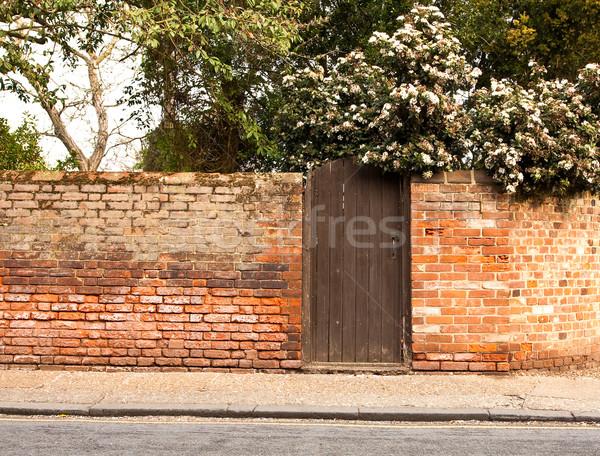 brick wall Stock photo © trgowanlock
