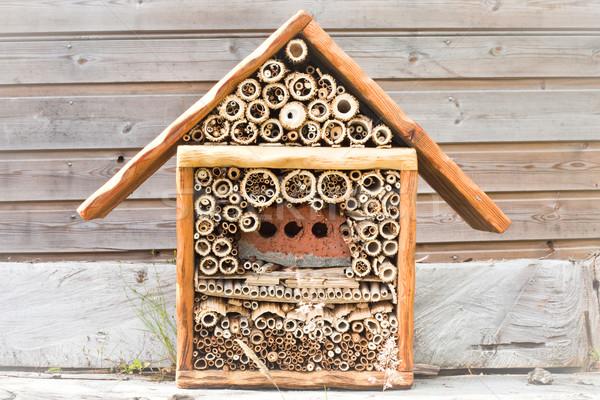 Ev güzel ahşap bahçe ahşap doğa Stok fotoğraf © trgowanlock