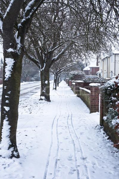 Snowy path Stock photo © trgowanlock