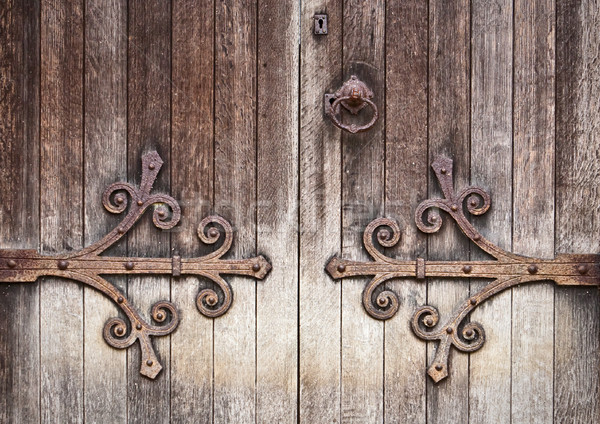 Oude houten deur mooie gedetailleerd afbeelding Stockfoto © trgowanlock