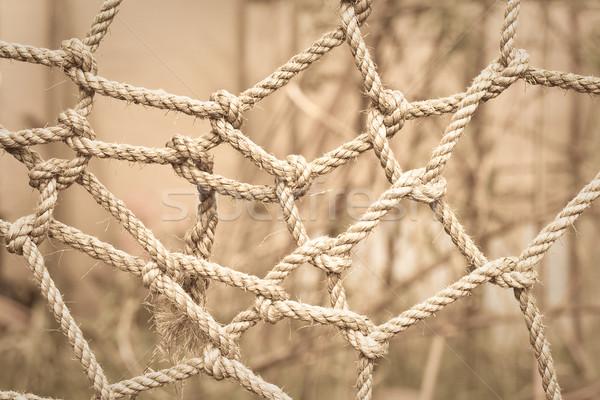 Complicado sépia imagem teia jogar amarrar Foto stock © trgowanlock