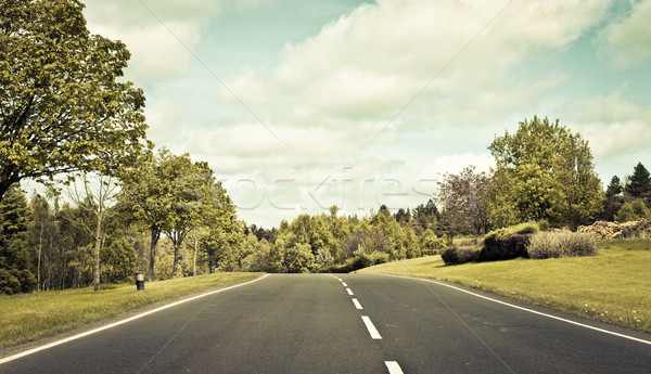 Country road Stock photo © trgowanlock