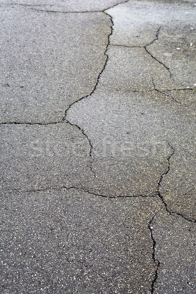 Cracked tarmac Stock photo © trgowanlock