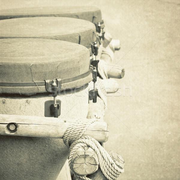African bongos Stock photo © trgowanlock