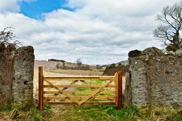 Houten poort stenen muur boerderij Schotland veld Stockfoto © trgowanlock