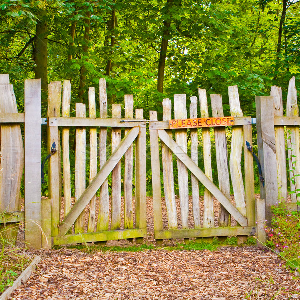 Rickety gate Stock photo © trgowanlock