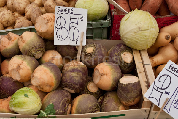 swede Stock photo © trgowanlock
