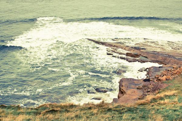 Storm at the coast Stock photo © trgowanlock