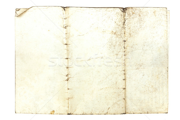 Grungy paper Stock photo © trgowanlock