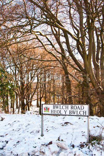 welsh road sign Stock photo © trgowanlock
