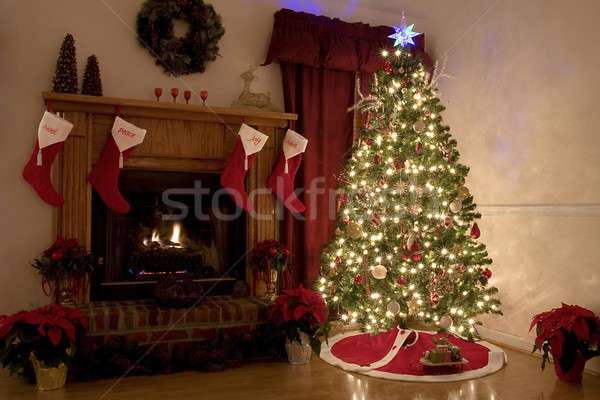 Christmas At Home Stock photo © Trigem4