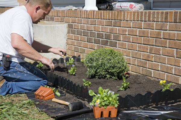 Working in garden Stock photo © Trigem4