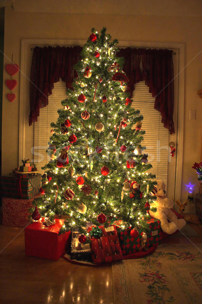 Christmas tree 1 Stock photo © Trigem4