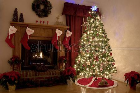 Christmas at home Stock photo © Trigem4