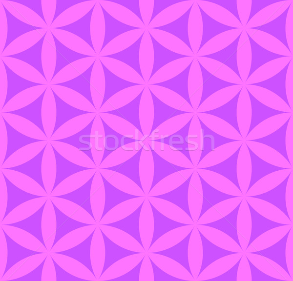 Flor vida vetor violeta rosa Foto stock © TRIKONA