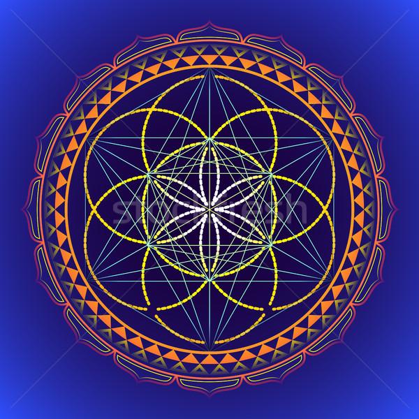 цвета мандала геометрия иллюстрация вектора Сток-фото © TRIKONA