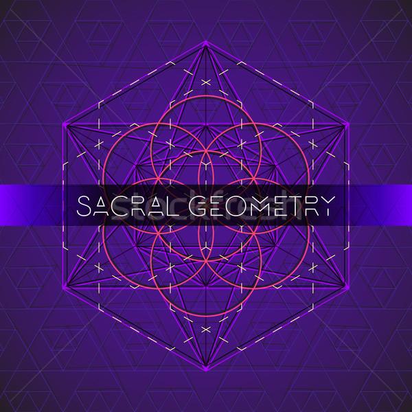 Schets zaad leven heilig geometrie vector Stockfoto © TRIKONA