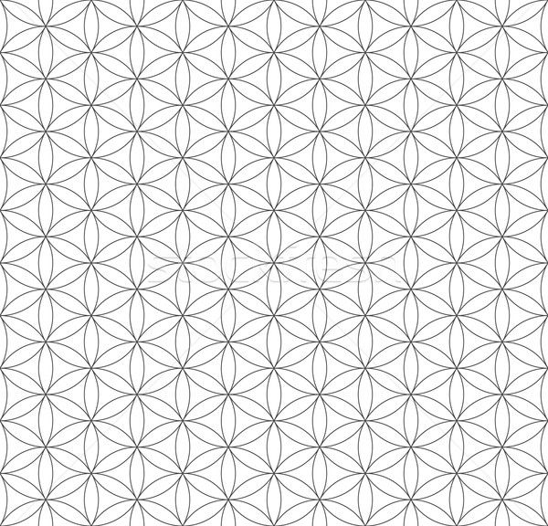 Nero contorno fiore vita sacro geometria Foto d'archivio © TRIKONA
