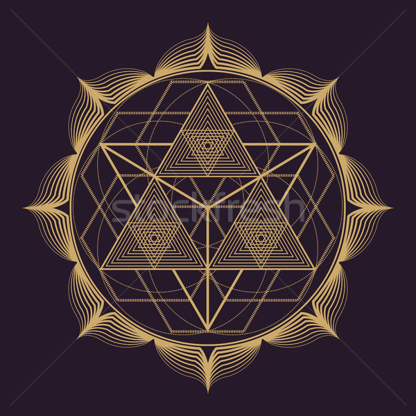 vector mandala sacred geometry illustration