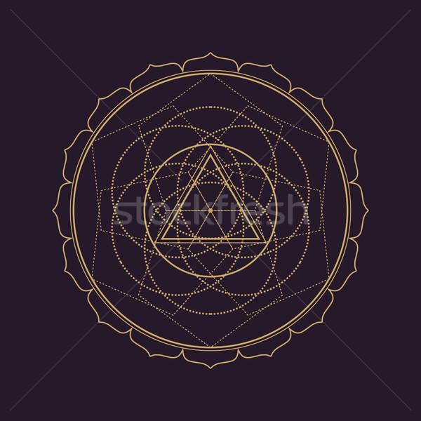 Vetor mandala geometria ilustração ouro Foto stock © TRIKONA
