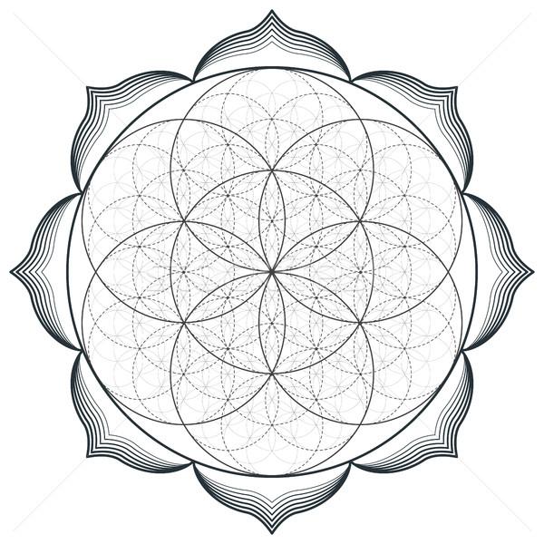 Vektor mandala szent mértan illusztráció körvonal Stock fotó © TRIKONA