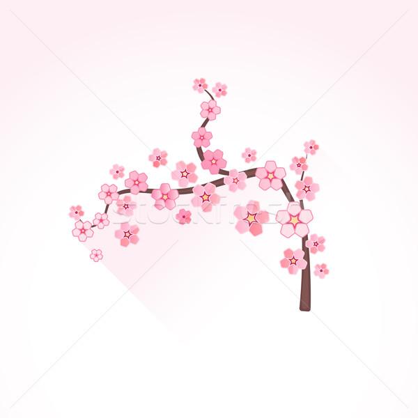 Vetor abstrato flor sakura ramo ilustração Foto stock © TRIKONA