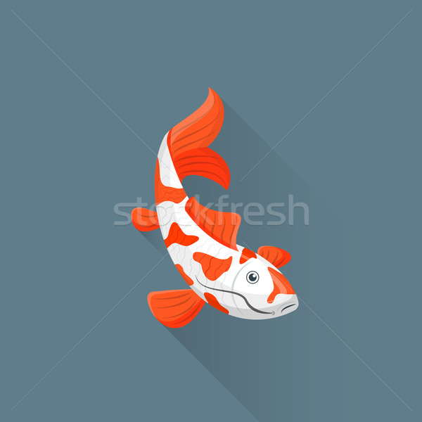 Koi stock photos stock images and vectors stockfresh for Koi fish vector