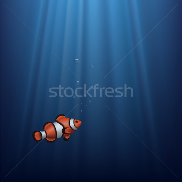 Clownfish Stock photo © tshooter