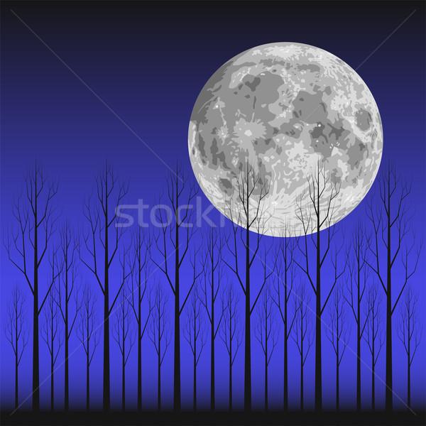 Moon and Tree Stock photo © tshooter