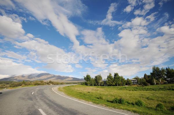 дороги фотография мнение пусто Новая Зеландия дерево Сток-фото © tshooter