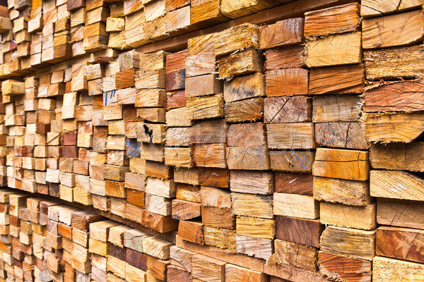 stack of wood logs Stock photo © tungphoto