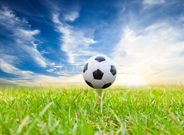 Voetbal golf gras voetbal sport zomer Stockfoto © tungphoto