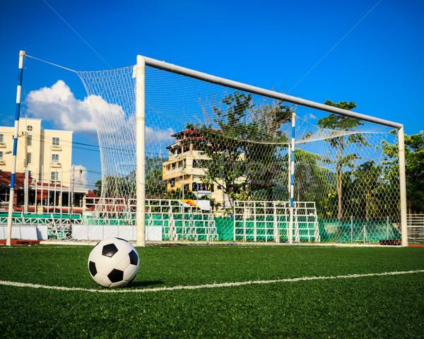 Piłka zielona trawa cel netto piłka nożna sportu Zdjęcia stock © tungphoto