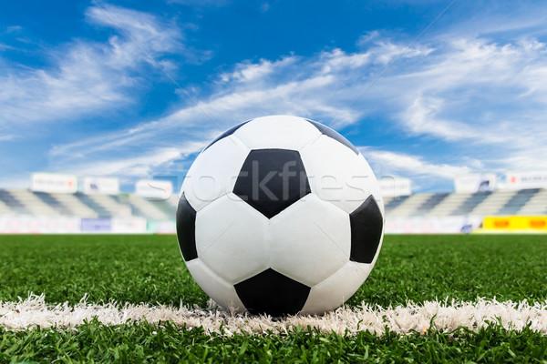 Piłka zielona trawa dziedzinie niebo sportu piłka nożna Zdjęcia stock © tungphoto
