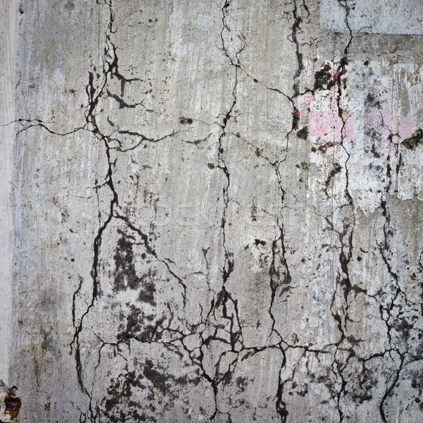 grunge texture for background Stock photo © tungphoto