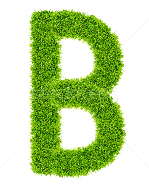 green grass letter B Isolated Stock photo © tungphoto