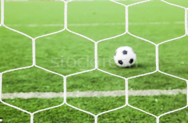 Stok fotoğraf: Futbol · yeşil · ot · net · futbol · spor · yaz