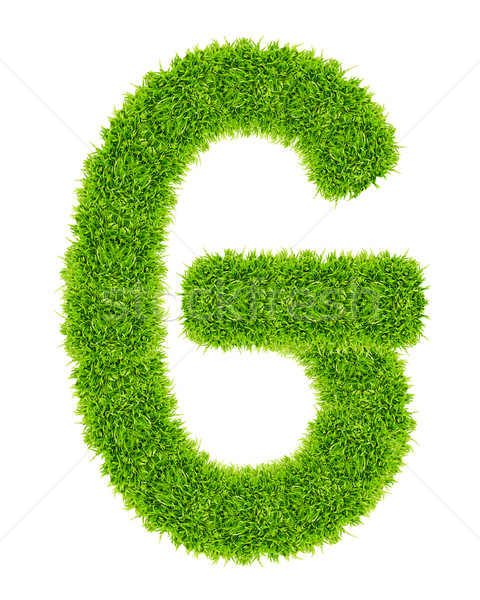 Yeşil ot mektup g yalıtılmış okul sanat mektup Stok fotoğraf © tungphoto