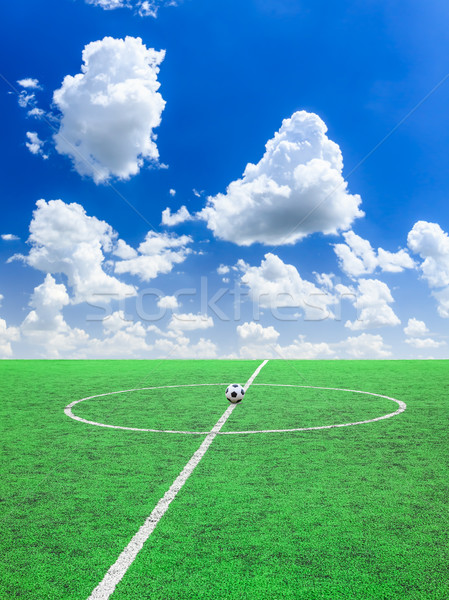 soccer ball on green grass   Stock photo © tungphoto