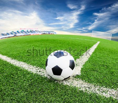 soccer ball on green grass field isolated Stock photo © tungphoto